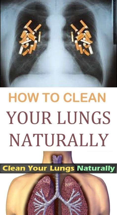 Best Detox For Heavy Smoker by Best 25 Lungs Ideas On Lung Detox E