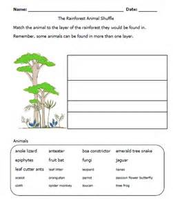 rainforest worksheet layers must add to my unit