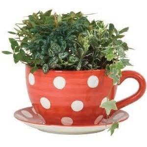 lifestyle products polka dot tea cup saucer planter