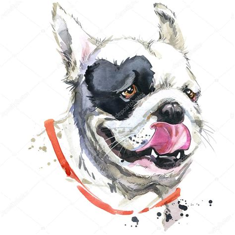 kiss french bulldog t shirt graphics dog illustration