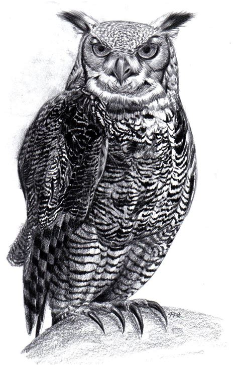 great horned owl tattoo design great horned owl by tristan despero on deviantart