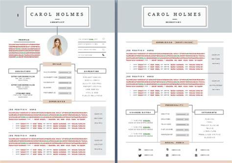professional cv exles pdf cv writing sle templates dubai forever