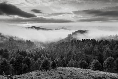 imagenes en blanco y negro paisajes blanco y negro naturaleza related keywords blanco y