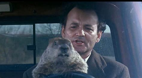 groundhog day driving what car does bill murray drive in the groundhog