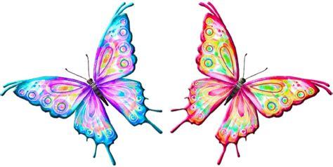 imagenes mariposas de colores mariposa de colores brillantes imagui