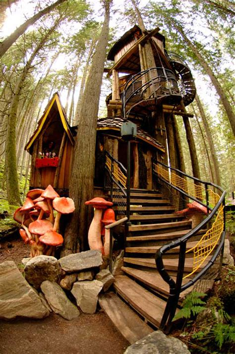 climb into one of these epic tree houses around the world