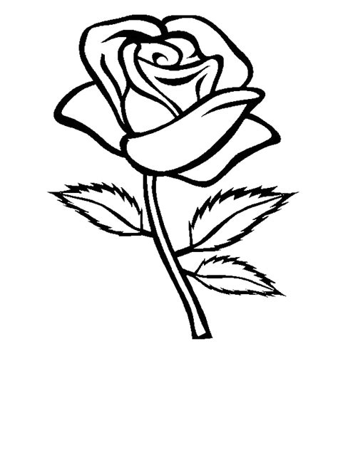 black and white coloring pages of roses rose with three leaves coloring page download print