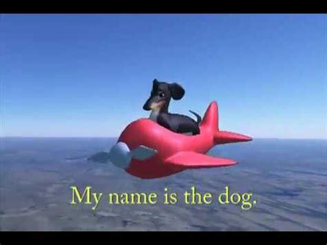 Meme Loftin - the dog in the airplane dank meme youtube