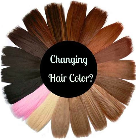 color wheel for hair 12 best images about hair color wheel on paul