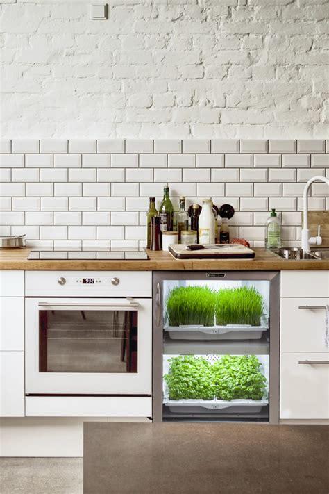 tech solutions  growing herbs  veggies  home