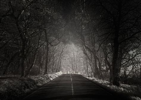 road in forest stock photo image of darkness mist photographer andy captures and lonely roads all