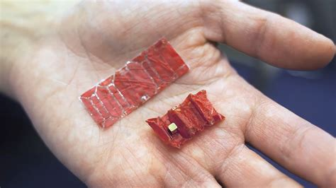 Origami Robot - mit develops quot ingestible origami robots quot dhtg