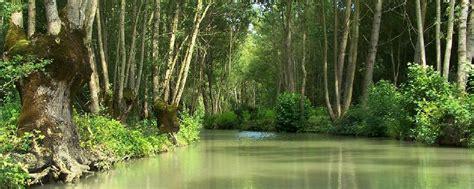 regionale europea nizza parco naturale regionale delle paludi poitou poitou
