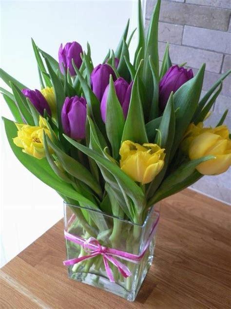 tulipani in vaso tulipani bulbi caratteristiche dei tulipani
