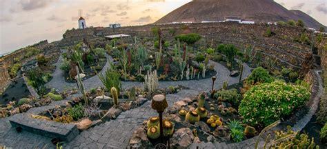 größter gartenzwerg der welt jard 237 n de cactus du befindest dich auf der tourismus