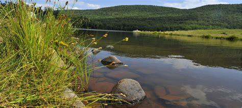 Cabin Rentals Catskills by Vrbo 174 Catskill Mountains Us Vacation Rentals Reviews