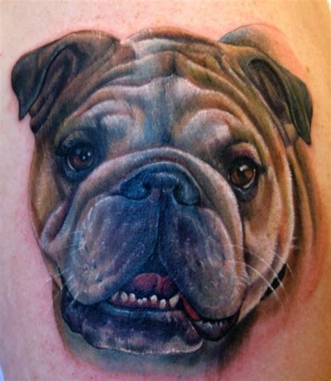 tribal bulldog tattoo bulldog tattooed images