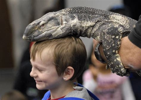 Monitor Nathan reptiles invade indian trails library