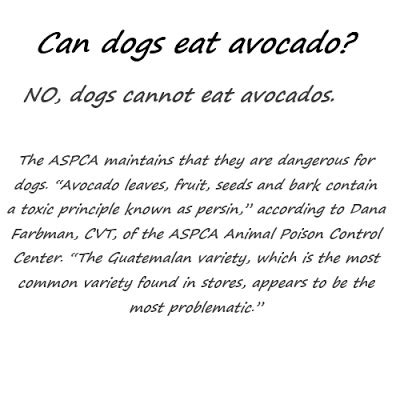 are avocados bad for dogs hermione gingold quotes quotesgram