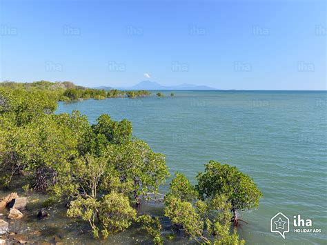 port douglas appartments port douglas rentals for your vacations with iha direct