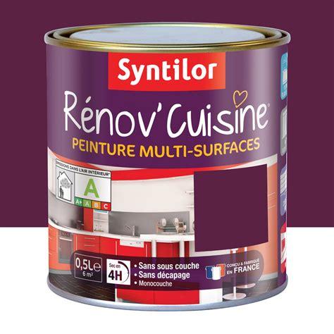 peinture aubergine cuisine peinture r 233 nov cuisine syntilor violet aubergine 0 5 l