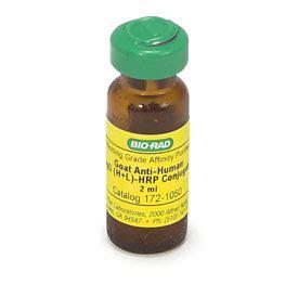 s protein hrp conjugate goat anti human h l hrp conjugate 1721050