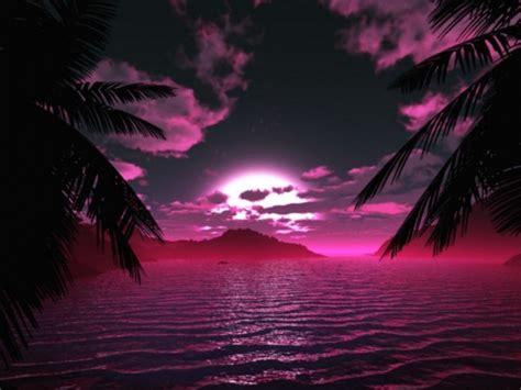 imagenes en blanco y morado paisajes violetas paisajes coloridos pinterest