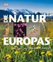 pflanzzeit für bäume 3800 naturf 252 hrer f 252 r entdecker wildblumen lehrerbibliothek de