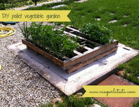 Vegetable Garden In Pallet Great Gardening Posts 2 Monday Link Up 31