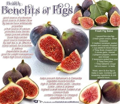 Dried Prune 500gr health benefits of dried figs that even beat out dates