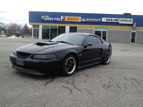 2003 gt mustang 2003 ford mustang gt 14999 canadian mustang owners