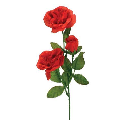 Stem Roses image gallery stem