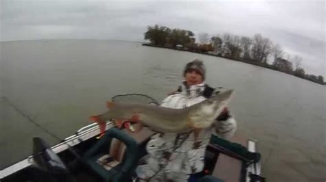 thames river youtube 51 inch musky thames river youtube