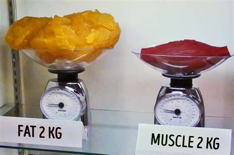 alimentazione per perdere massa grassa differenza tra massa grassa e massa muscolare forever c9