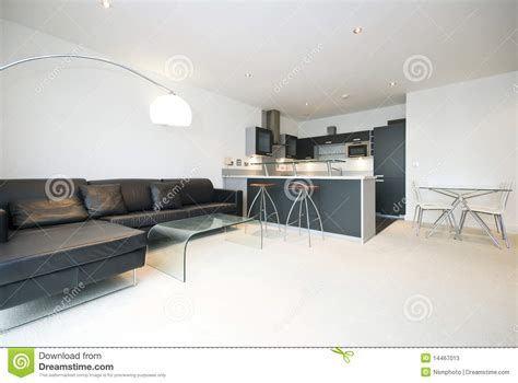Contemporary Open Plan Living Room With Kitchen Stock Image   Image: 14467013