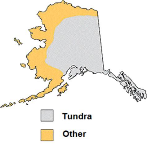 alaskan tundra microbewiki