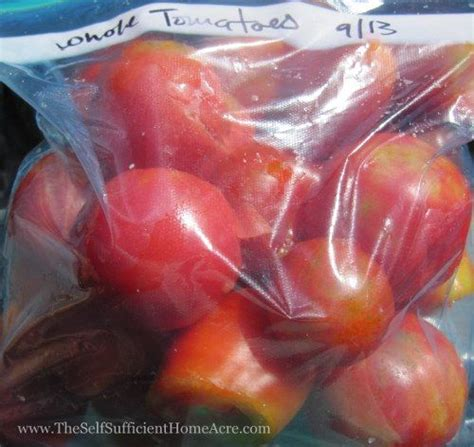 blanch and freeze tomatoes white gold
