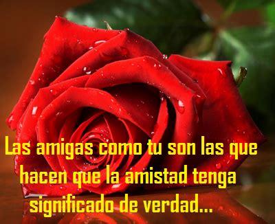 imagenes de rosas rojas con frases de amistad imagenes de rosa rosas con frases de amor y amistad para dedicar a mi novio