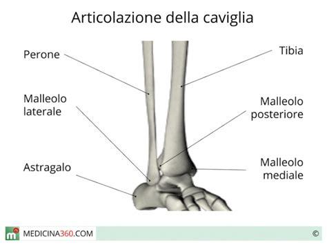interno caviglia frattura malleolo tipi sintomi cause trattamento e