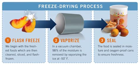 image gallery freeze drying