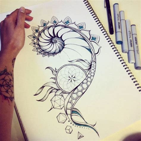 simple nautilus tattoo simple nautilus tattoo www pixshark com images