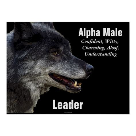 alpha male quotes quotesgram