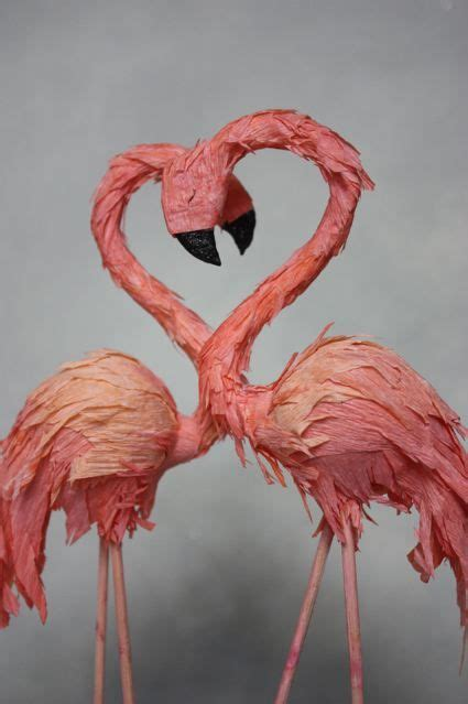 Geos My Baby Pouch Flamingo 17 best images about flamingo on pranks for