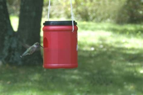 easy diy hummingbird feeder ziggity zoom