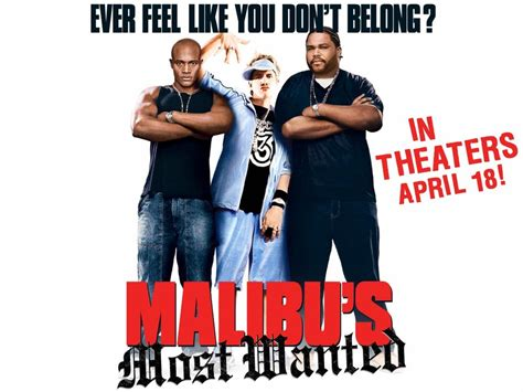 Malibus Most Wanted Meme - malibu s most wanted is on netflix sherdog forums