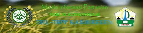thl tbpp bireuen brosurleaflet tanaman perkebunan