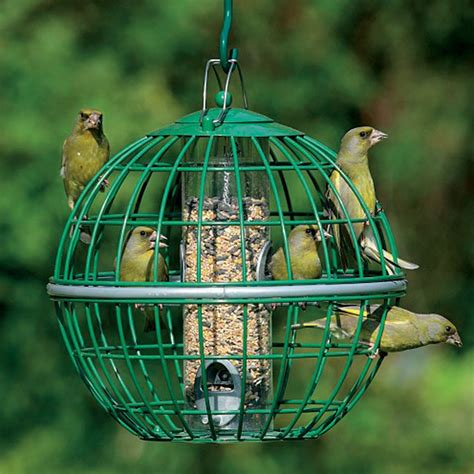 how to get birds to your feeder how to landscape with