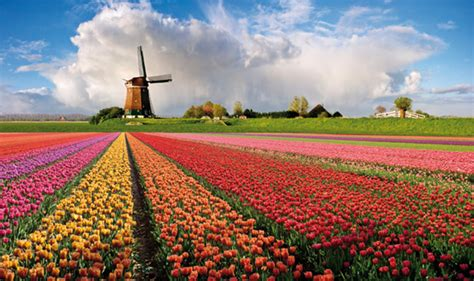 nh fiori nh hotels blogs 187 vacanze di primavera quattro