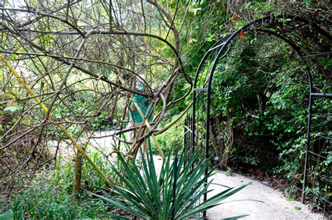 botanical gardens in nc wilson botanical gardens in wilson carolina