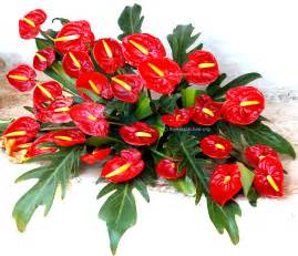 flower bouquets ooty flower show 2014 gallery 1